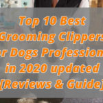 10 Best Grooming Clippers for Dogs Professional in 2020 updated [Reviews & Guide]