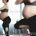 How Long Is The First Trimester Of Pregnancy - Baby's Development