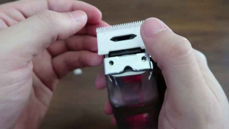 Top 5 Best Ceramic Clipper Blades Reviews 2021 – Reasonable Price