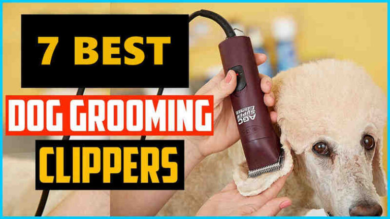 Top 7 Best Andis Dog Clippers Reviews in 2021 and Guide